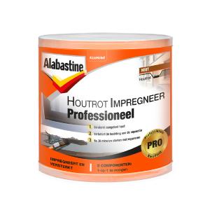 Alabastine Houtrot Impregneer Professioneel